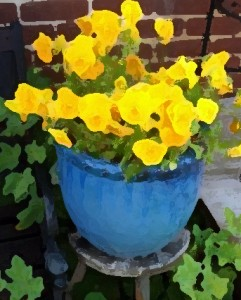 Yellow flowers in a blue pot.